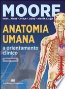 Anatomia umana e orientamento clinico