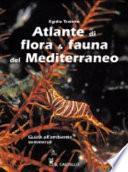 Atlante di flora & fauna del Mediterraneo