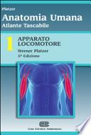 Atlante tascabile di anatomia umana