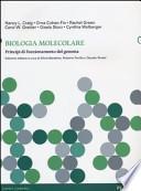 Biologia molecolare. Principi di funzionamento del genoma