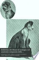 Bollettino dei Musei di zoologia e di anatomia comparata della università di Torino
