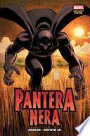 Chi è la Pantera Nera?