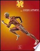 Corpo umano - 300 domande
