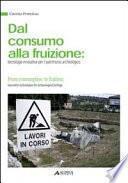 Dal consumo alla fruizione. Tecnologie innovative per il patrimonio archeologico. Ediz. italiana e inglese