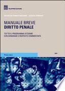 Diritto penale. Manuale breve. 2010 - Tutto il programma d'esame con domande e risposte commentate.