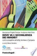 Dove va l'accoglienza dei minori? Limiti e prospettive dell'affido familiare in Campania