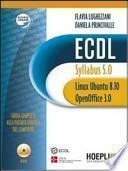 ECDL Syllabus 5.0, Linux Ubuntu 8.10 e OpenOffice 3.0