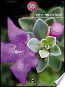 Erbe medicinali - Star bene