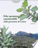 Erbe spontanee commestibili della provincia di Cuneo