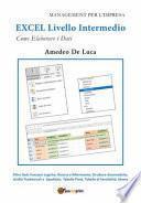 Excel. Livello intermedio