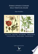Farmaci oppioidi e Cannabis nella terapia del dolore
