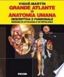Grande atlante di anatomia umana. Descrittiva e funzionale. Nozioni di istologia e patologia