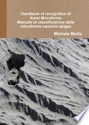 Handbook of recognition of Karst Microforms