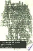 I papiri copti del Museo egizio di Torino