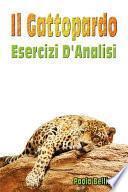 Il Gattopardo: Esercizi D'Analisi