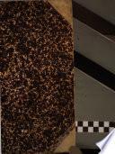Il policlinico. Sezione pratica periodico di medicina, chirurgia e igiene