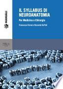 Il syllabus di neuroanatomia. Per medicina e chirurgia