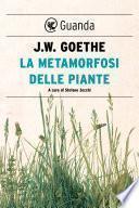 La metamorfosi delle piante