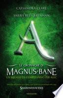 Le cronache di Magnus Bane - 8. Un regalo di compleanno per Alec