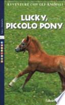 Lucky, piccolo pony