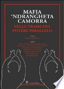 Mafia, 'ndrangheta, camorra nelle trame del potere parallelo
