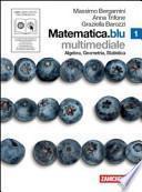Matematica. Blu. Algebra. Geometria. Statistica. Con espansione online. Con DVD e CD-ROM. Per le Scuole superiori