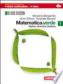 Matematica. Verde. Algebra. Geometria. Statistica. Con espansione online. Per le Scuole superiori