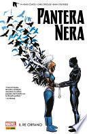 Pantera Nera (2016) 3