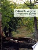 Patriarchi vegetali