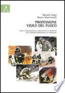 Professione vigile del fuoco. Aspetti organizzativi, comunicativi e operativi del comando provinciale di Frosinone