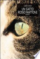 Un gatto rosso mattone
