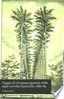Viaggio di circumnavigazione della regia corvetta Caracciolo, 1881-84