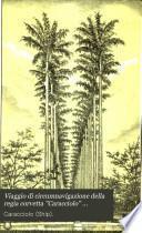 Viaggio di circumnavigazione della regia corvetta Caracciolo (comandante C. de Amezaga), negli anni 1881-82-83-84